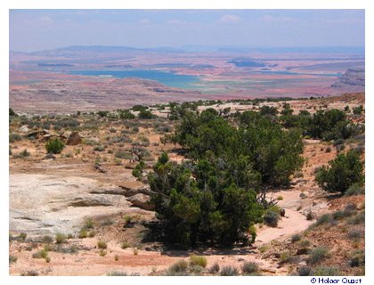 Lake Powell - Burr Trail
