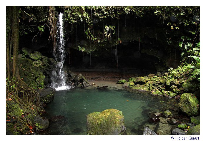Emerald Pool - Dominica